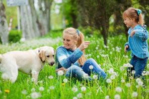 Tierkommunikation mit Hunden (©123rf.com)