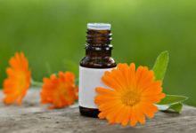 Aromaöl aus der Calendula Blüte