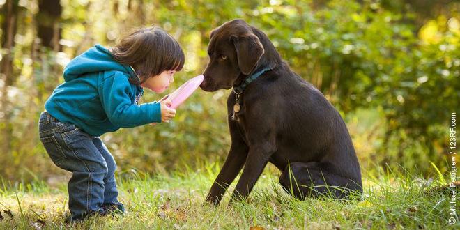 Spiele mit dem Hund (©123rf.com)