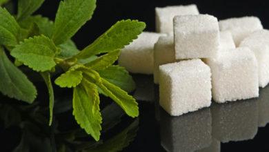 Stevia, der gesunde Zuckerersatz