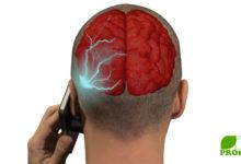 Handy - die Mikrowelle am Ohr