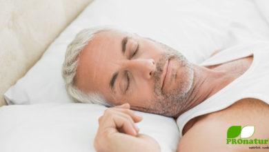 Warum ist der Schlaf notwendig?