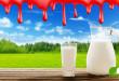 Turbo Milchkuh – Verheizt für billige Milch. Dokumentation über Qual, Tod und Geiz ist geil!